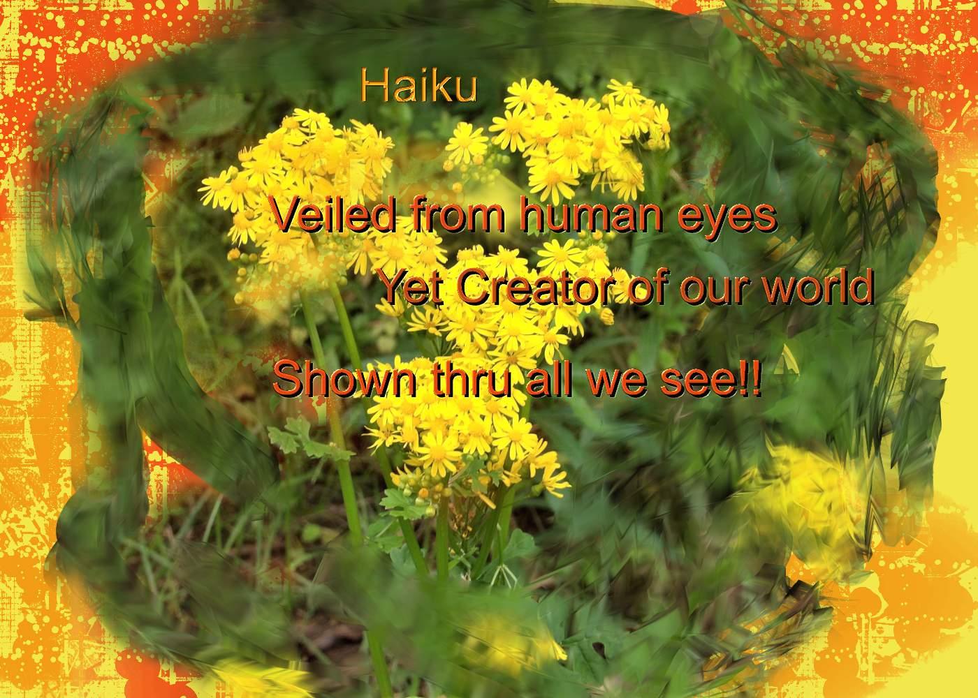 Haikufortoday